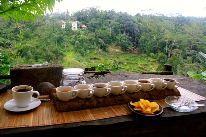Bali Sightseeing combination Luwak Coffee Tour