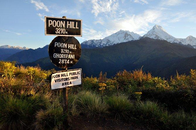 9 Days short and Easy Ghorepani Poonhill Trekking in Nepal