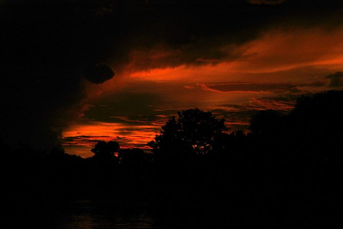 Night safari from Iquitos with Jungle Reps