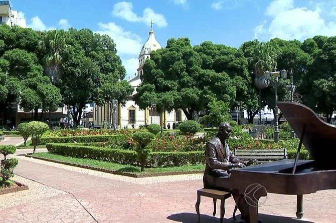 Private Transfer: Belo Horizonte CNF International Airport to Uba