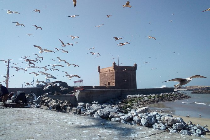Private Trip to Essaouira up To 6 People