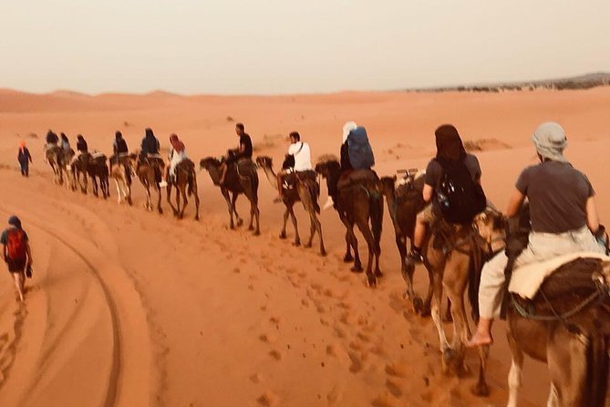 Private Merzouga Desert tour from Fez ends In Marrakech