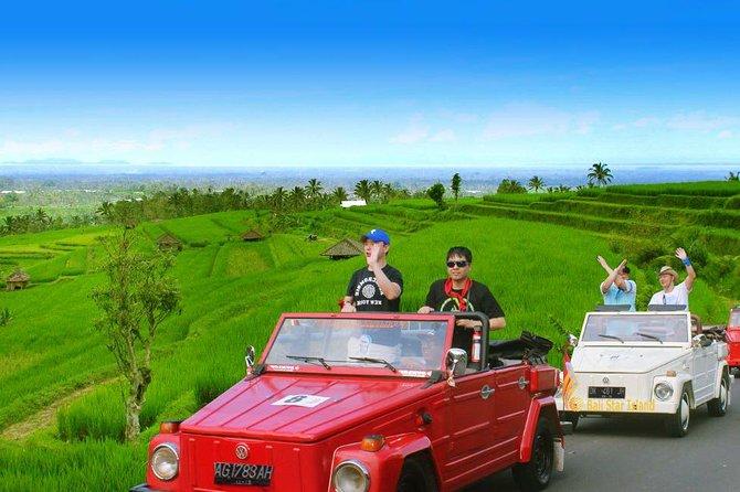 Jatiluwih VW Safari Bali Tour - Volkswagen Classic Car Tours