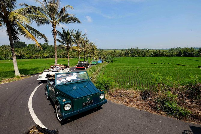 Ubud VW Safari Bali Tour - Volkswagen Classic Car Tours