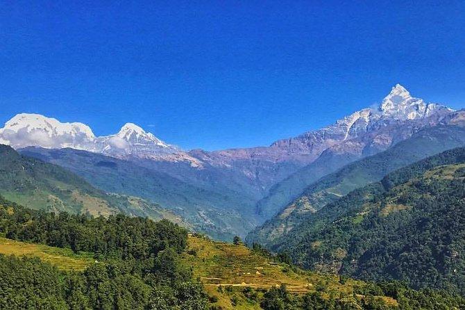Kathmandu,Chitwan,Pokhara with Dhampus Sarangkot Trek