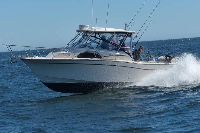 Spring Season Sport Fishing Adventure Charter for Salmon Fishing & Bottom Fish