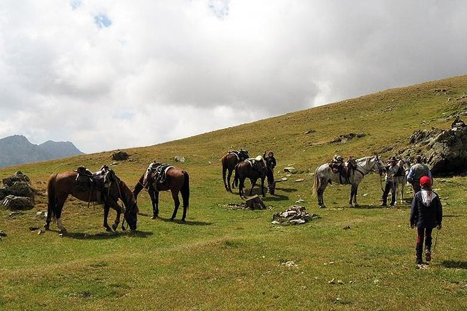 Rila Trail Riding for Experienced Riders