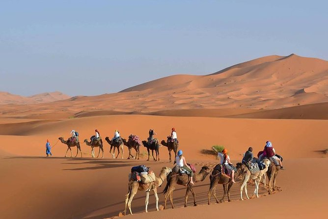 Fes To Fez Desert and Camel Trekking tour 1 Night 2 Days