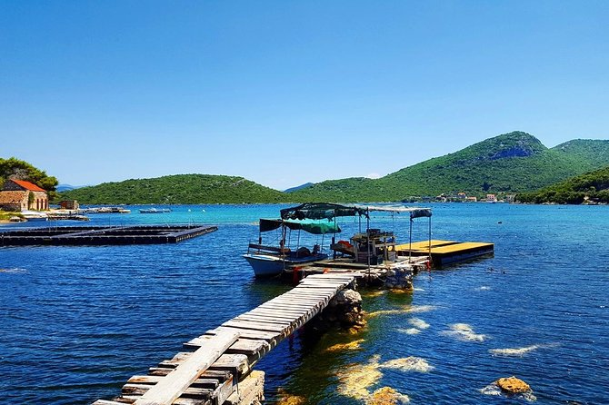 Peljesac wine and oysters tasting private and small group tour from Dubrovnik