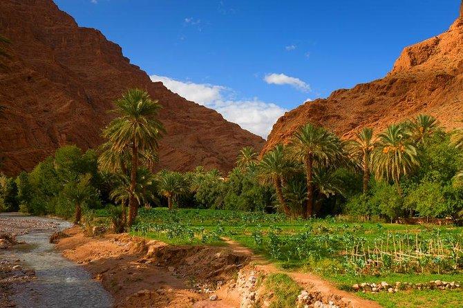 Multi Day Trip From Marrakech to Fes Via Sahara Desert