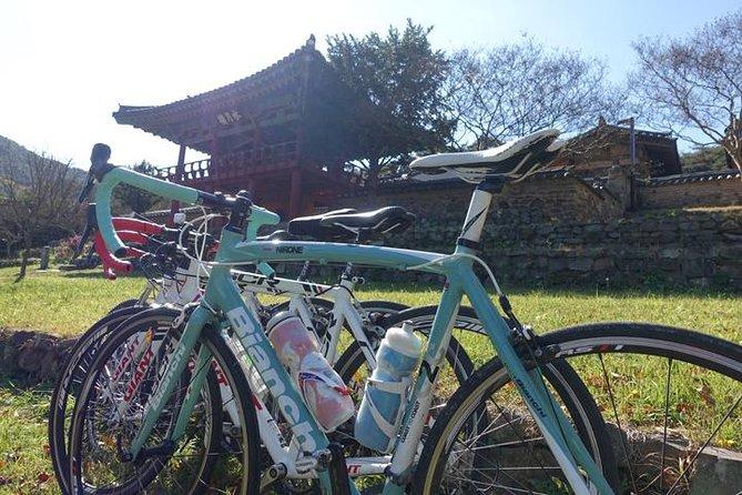 ソウル発宿泊付きプライベート サイクリング ツアー