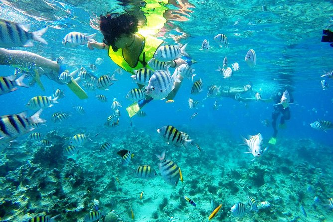 Snorkeling tour & Sosua Beach Day