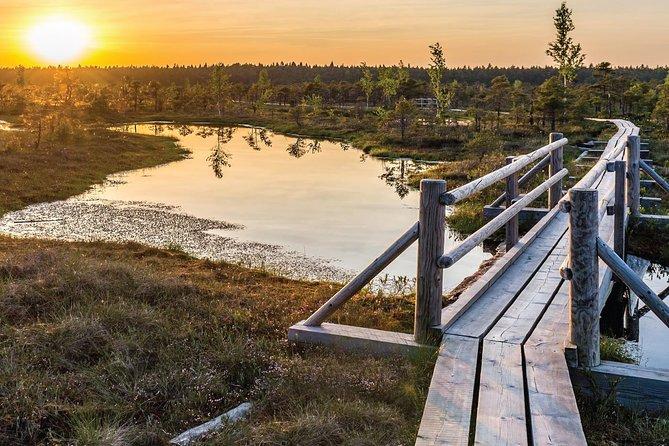 Sunrise Tour To Great Kemeri Bog
