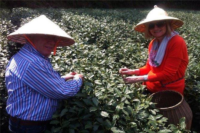 Tour Privado: Tour do Dia da Cultura do Chá de Hangzhou