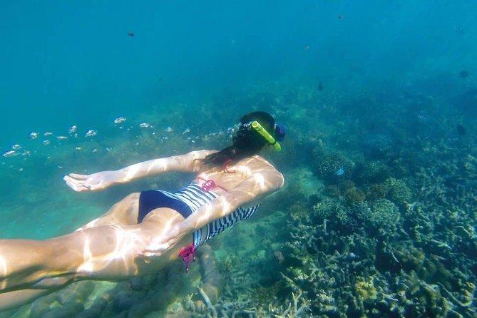 Kornati islands snorkeling excursion from Zadar