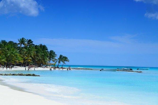 Punta Cana Full-Day Sightseeing Tour vanuit Samaná