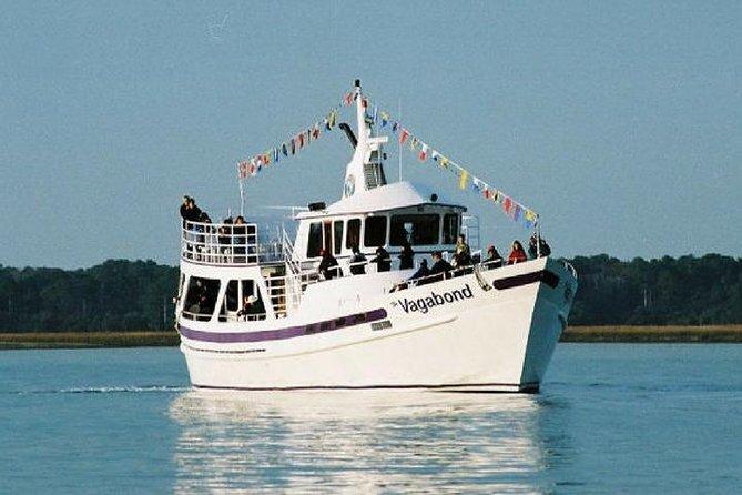 Vagabond - Ocean Dolphin Cruise