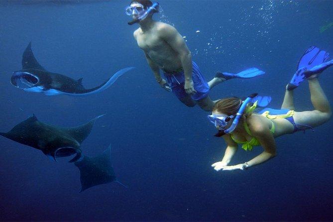 Nusa Penida Island Tour with Snorkeling