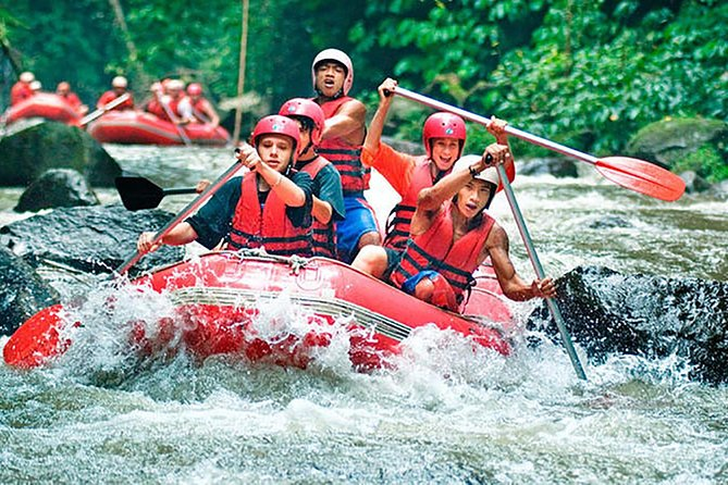 Ayung River Rafting, Ubud Tour, Tanah Lot Temple Tour