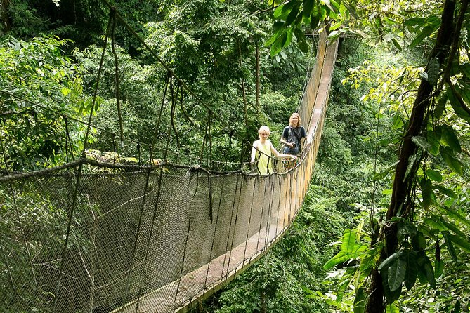 Rainmaker Park Hanging Bridges & Waterfalls Tour with Jade Tours