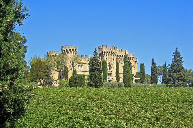 Avignon & Chateauneuf-du-Pape Wineries Private Day Tour from Aix-en-Provence