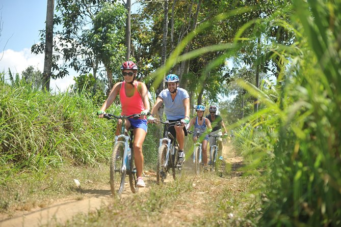Kintamani Mountain Cycling - True Bali Experience