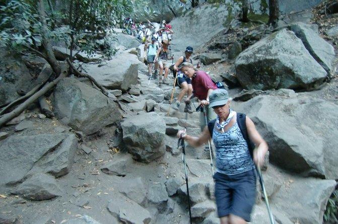 Enjoy a guided hike through Yosemite National Park.