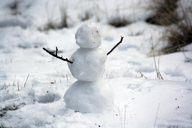 Snow Fun!*