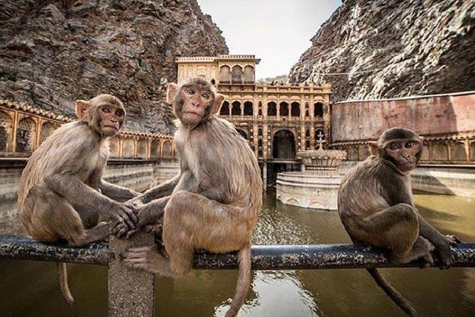 Jaipur Tour By Car & Guide - Private Full Day Sightseeing with Tickets