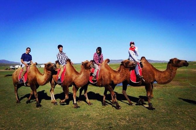 Experience Mongolia in 20 days
