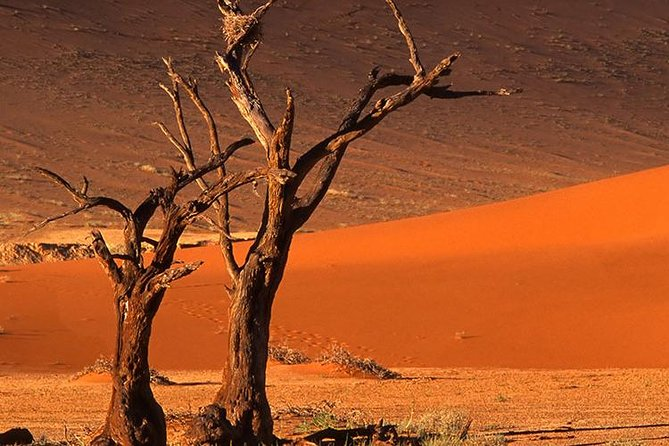 3 Days Sossusvlei Tours (Accommodated)