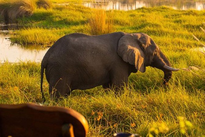 7 Days Extreme Safari Botswana (Accomodated)