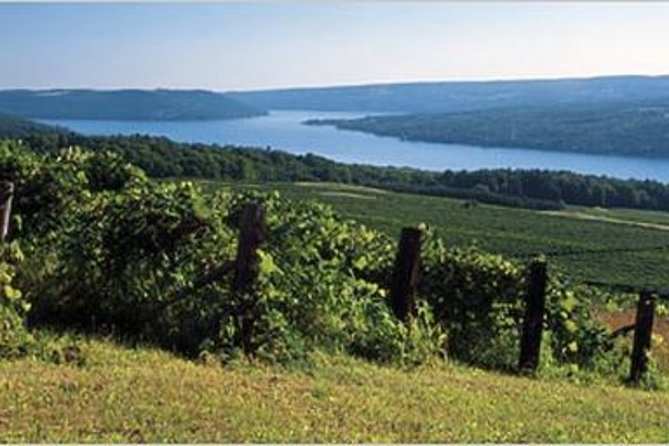 Keuka Lake Wine Experience