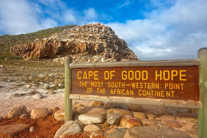 Cape Town: Private Morning Cape Peninsula Tour