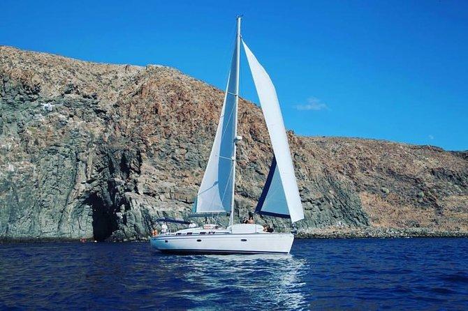 Navegando com o Picarus: 4 horas de uma aventura engraçada, gostosa e educativa