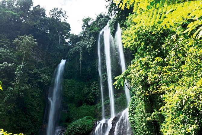 Best Of Bali Lemukih Waterfall Trekking