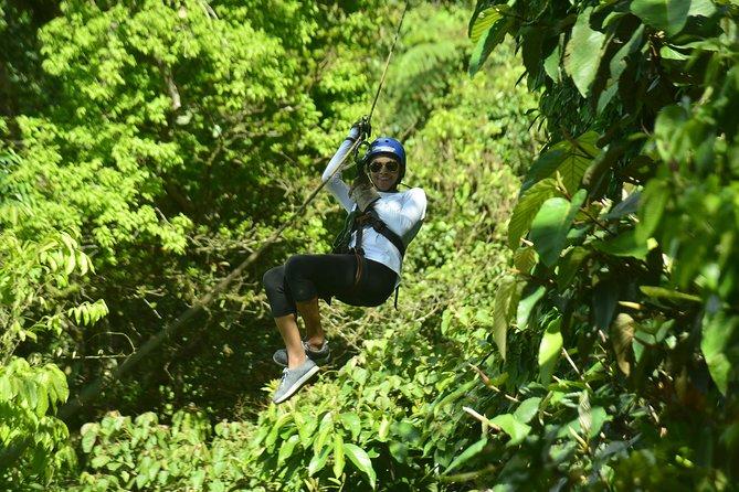 Canopy Zip Line in Go Adventure Park