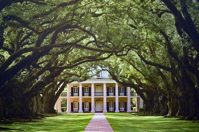 New Orleans City and Plantation Tour Combination