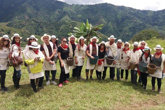 Coffee Tour in Medellin