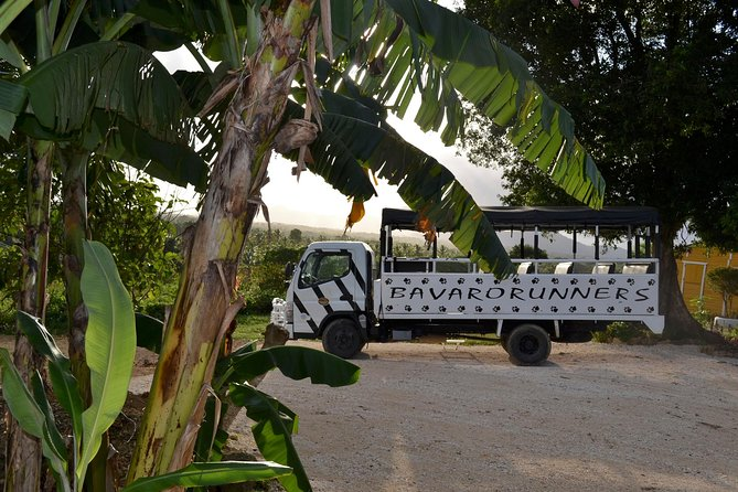 Dominican Republic Countryside Safari Tour from Punta Cana