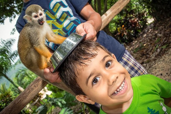 Monkeyland and Plantation Safari Tour from Punta Cana