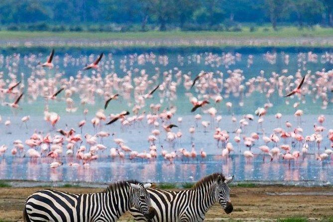 2 Full Days Lake Naivasha Hell's Gate private Safari