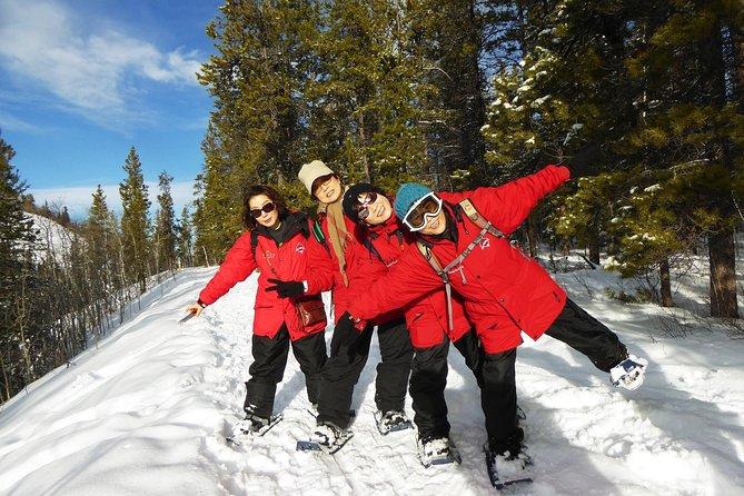 Aventura em raquetes de neve Yukon | meio dia