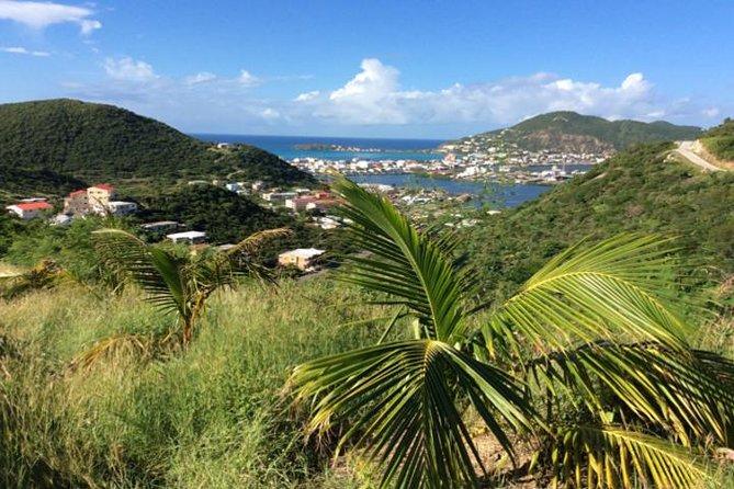 Bild Landausflug: Sint Maarten-Strand, Besichtigungs- und Einkaufstour (Kreuzfahrt-Ausflug)