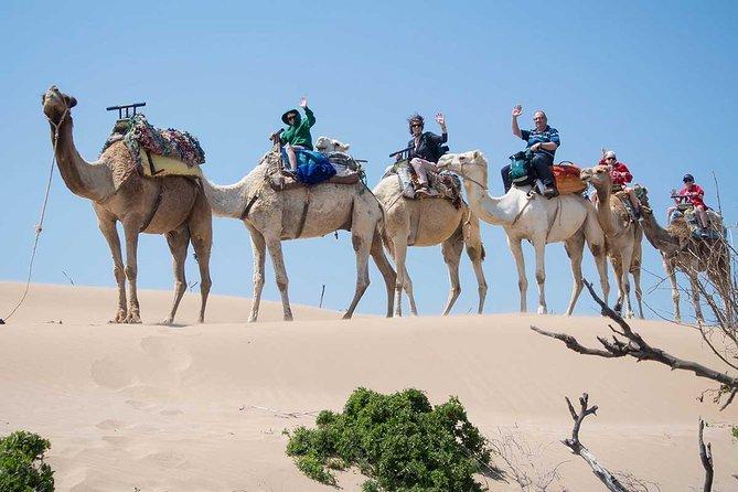 Kleine Sahara-Wüste von Agadir mit Mittagessen 4x4