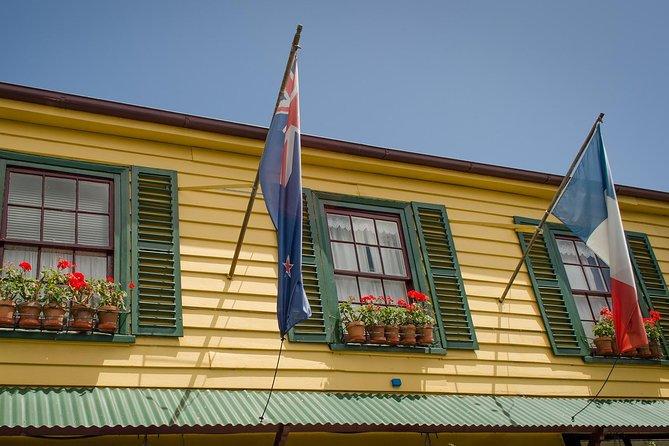 Private Akaroa Day Tour including Harbour Cruise and Alpaca Farm Tour