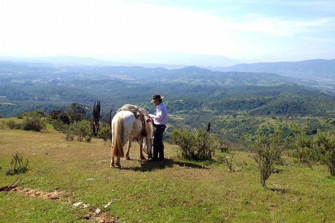 Horseback Ride with Barbecue in the Hills from Santiago