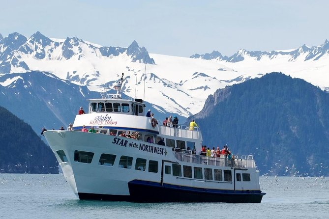 Kenai Fjords Wildlife Cruise with Lunch