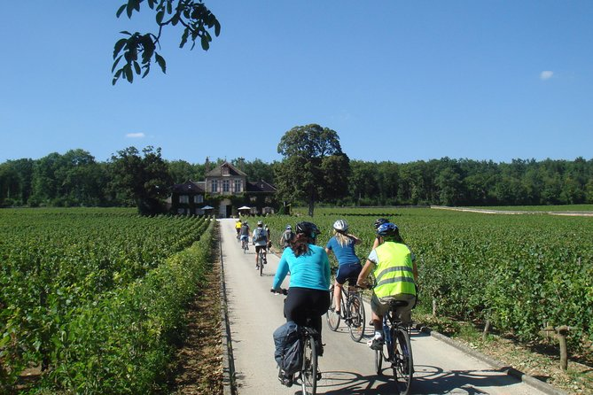 Burgundy Bike Tour with Wine Tasting from Beaune