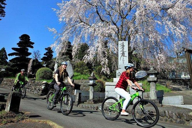 Mt Fuji Satoyama Village Cycling Ecotour (Mar-Nov)